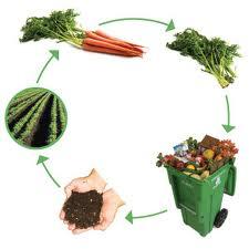 Je me renseigne sur les solutions de compostage dans Déchets (limitation et gestion) compostage